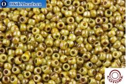 COTOBE Beads Antique Apple (J061) 11/0