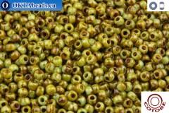 COTOBE Beads Antique Grapes (J038) 11/0 CTBJ038