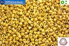 COTOBE Beads Antique Yellow Jaspers (J024) 8/0