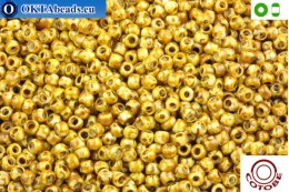 COTOBE Beads Antique Yellow Jaspers (J024) 8/0 CTBJ024