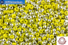 COTOBE Beads Apple and Silver (J075) 11/0