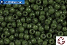 COTOBE Beads Chive (2005) 11/0, 10gr