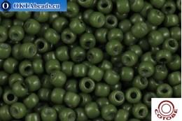 COTOBE Beads Chive (2005) 11/0, 10гр