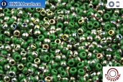 COTOBE Beads Summer Leaves and Vitrail (J018) 11/0