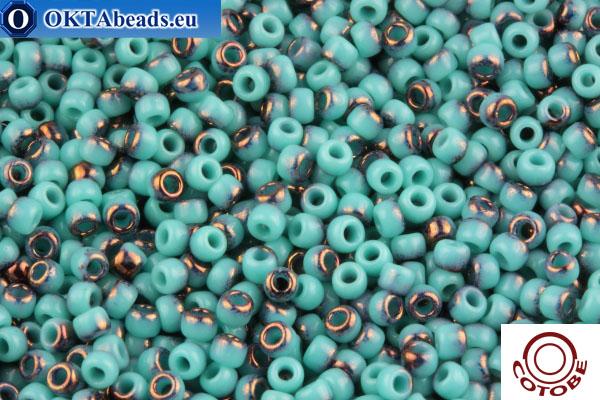 COTOBE Beads Turquoise and Bronze (J069) 11/0