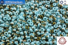COTOBE Beads Turquoise and Old Bronze (J008) 11/0
