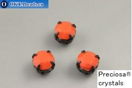 Sew on Preciosa chaton Maxima in set Coral - Black ss34/7,25mm, 1pc PR_chat_151