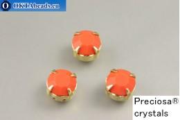 Sew on Preciosa chaton Maxima in set Coral - Gold ss34/7,25mm, 1pc PR_chat_149