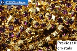 Стразовая цепочка Прециоза Максима Amethyst - Золото 24кт ss12/3,2мм, 10см PR_rtz_009