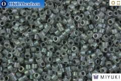 MIYUKI Beads Delica Lined Dark Grey AB 11/0 (DB81)