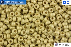 MIYUKI Beads Duracoat Galvanized Matte Silver (4201F) 15/0