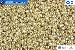 MIYUKI Beads Duracoat Galvanized Silver 15/0 (4201)