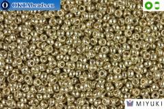 MIYUKI Beads DURACOAT Galvanized Silver 8/0 (4201)