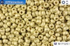 MIYUKI Beads Duracoat Galvanized Silver Matte (4201F) 11/0