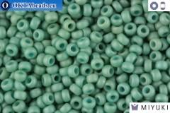 MIYUKI Beads Fancy Frosted Pale Seafoam Green (2028) 11/0