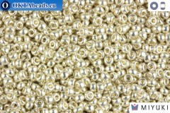 MIYUKI Beads Galvanized Silver 11/0 (1051)