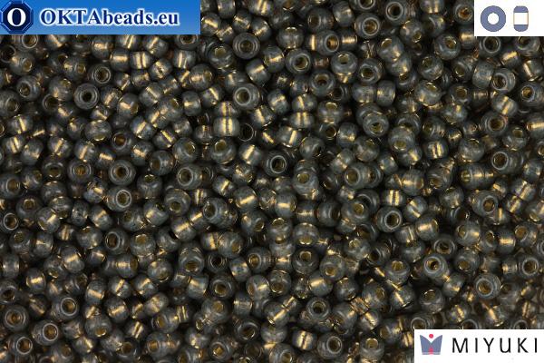 MIYUKI Beads Grey 11/0 (650) 11MR650