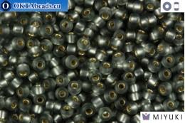 MIYUKI Beads Matte Silver Line Grey (21F) 11/0 11MR21F