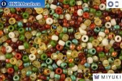 MIYUKI Beads Mix Earthtone 11/0 (mix07)