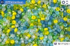 MIYUKI Beads Mix Lagoon 11/0 (mix06)