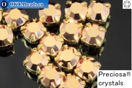 Sew on Preciosa MAXIMA chaton in set Capri Gold - Gold ss16/4mm, 15pc PR_chat_017