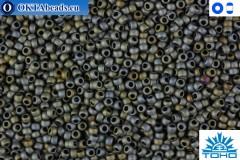 TOHO Beads Matte-Color Iris Gray (613) 15/0