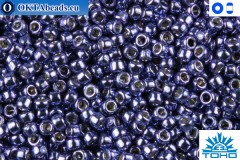 TOHO Beads Permanent Finish - Metallic Polaris (PF567) 11/0