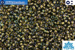 TOHO Beads Gold-Lined Luster Black Diamond (271) 15/0