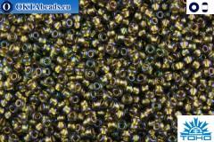 TOHO Beads Gold-Lined Luster Black Diamond (271) 15/0