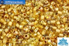 TOHO Beads Mix Kintaro - Gold(3206)
