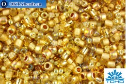 TOHO Beads Mix Kintaro - Gold(3206) TX-01-3206