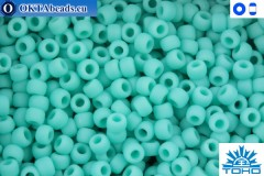 Toho Beads Opaque-Frosted Turquoise (55F) 11/0