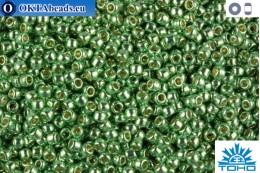 TOHO Beads Permanent Finish - Galvanized Mint Green (PF570) 15/0 TR-15-PF570