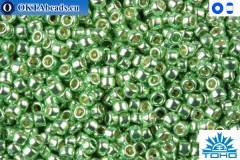 TOHO Beads Permanent Finish - Galvanized Sea Foam (PF560) 11/0