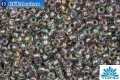 TOHO Beads Round Inside Color Crysal Rainbow- Gray Metallic Lined (266) 15/0