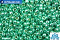 TOHO Beads Round PermaFinish Aqua Galvanized (PF561) 15/0