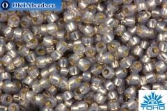 TOHO Beads Round PermaFinish Black Diamond Opal Silver Lined (PF2115) 15/0