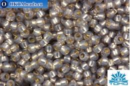 TOHO Beads Round PermaFinish Black Diamond Opal Silver Lined (PF2115) 15/0 TR-15-PF2115