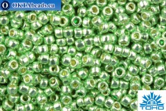 TOHO Beads Round PermaFinish Lime Galvanized (PF560) 15/0