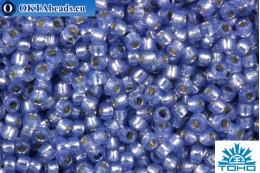 TOHO Beads Round PermaFinish Tanzanite Opal Silver Lined (PF2123) 15/0 TR-15-PF2123