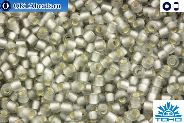 TOHO Beads Silver-Lined Frosted Black Diamond (29AF) 11/0 TR-11-29AF