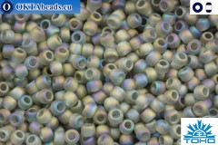 TOHO Beads Trans-Rainbow-Frosted Gray (176BF) 11/0